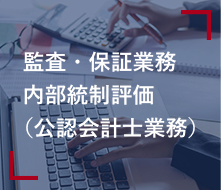監査・保証業務・内部統制評価(公認会計士業務)